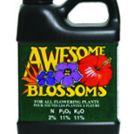 AWESOME BLOOSOM